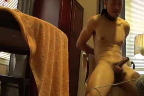 asian Buddy Is tied, Edged And Milked Dry.