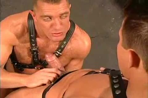 Leather Experience