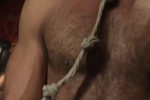 Muscle-fastened Hunk tied Up And Teased