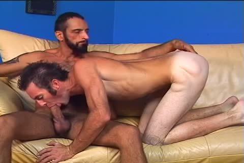 Two hairy men Randy And Tom Colt nail Each Other