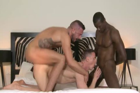 Muscle homo trio And cumshot