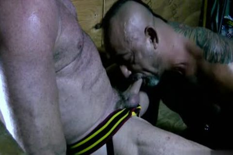 large cock Bear oral stimulation-sex With goo flow