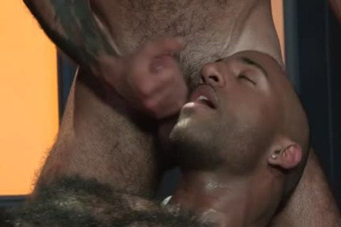 Muscle Bear 3some And cumshot