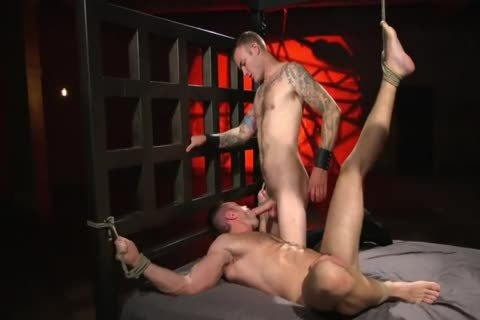 Alex Mecum receives Toremented
