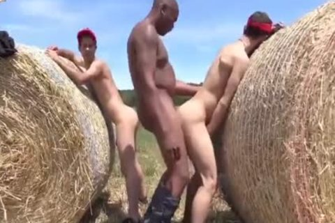 big darksome dong bonks two Bottoms In The HayStacks